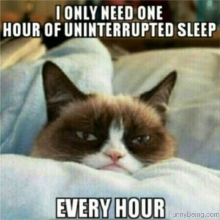 """""""I only need one hour of uninterrupted sleep every hour."""""""