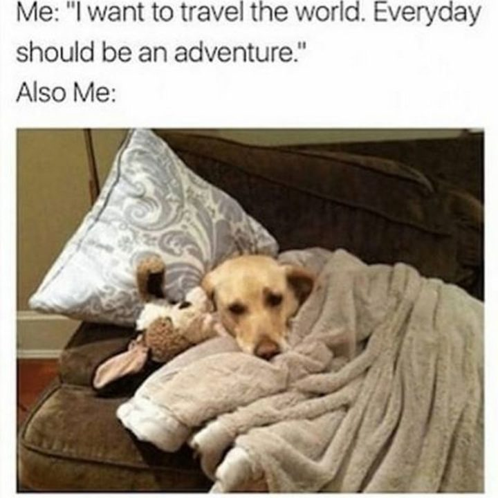"""""""Me: I want to travel the world. Every day should be an adventure. Also me:"""""""