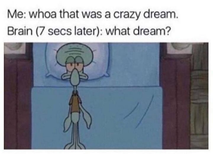 """""""Me: Whoa that was a crazy dream. Brain (7 secs later): What dream?"""""""