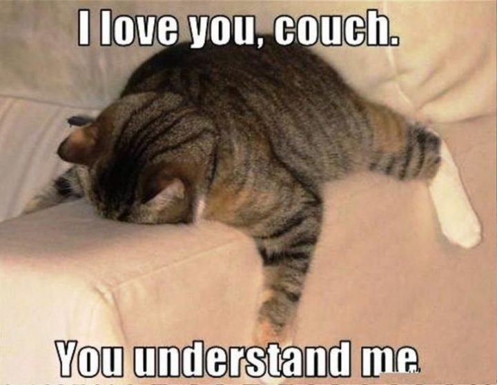 """""""I love you, couch. You understand me."""""""