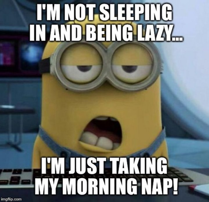 """""""I'm not sleeping in and being lazy...I'm just taking my morning nap!"""""""