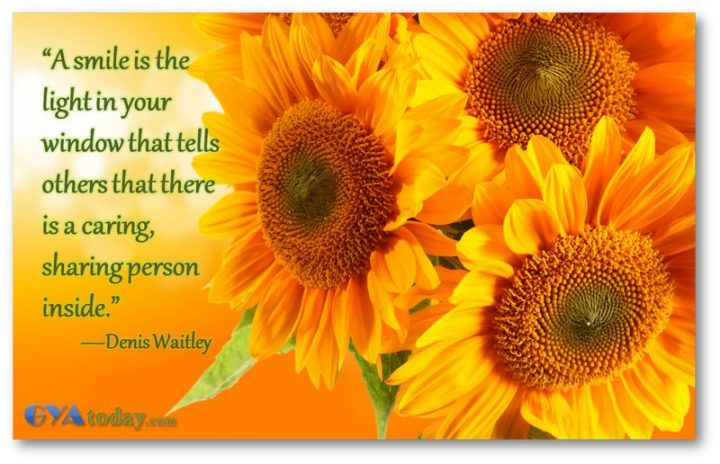 """55 Smile Quotes - """"A smile is the light in your window that tells others that there is a caring, sharing person inside."""" - Denis Waitley"""