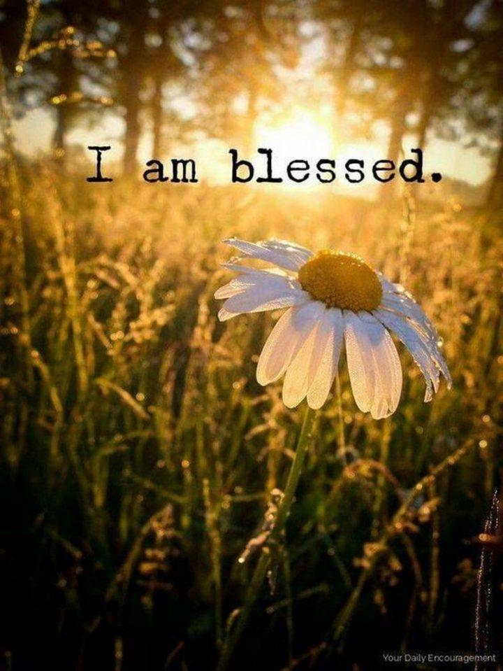 """101 Thank You Memes - """"I am blessed."""""""