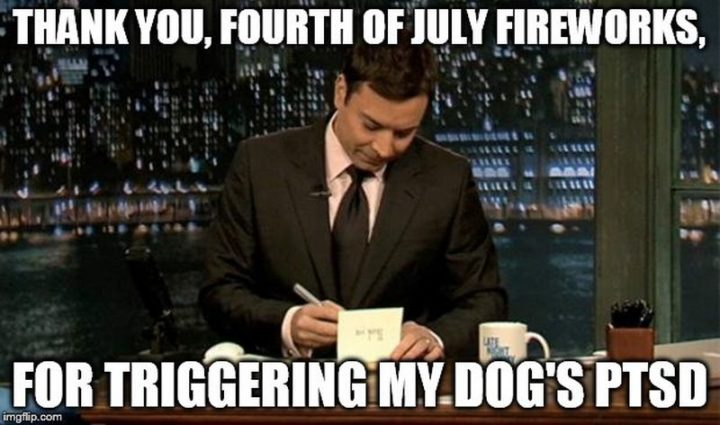 """101 Thank You Memes - """"Jimmy Fallon: Thank you, fourth of July fireworks, for triggering my dog's PTSD."""""""