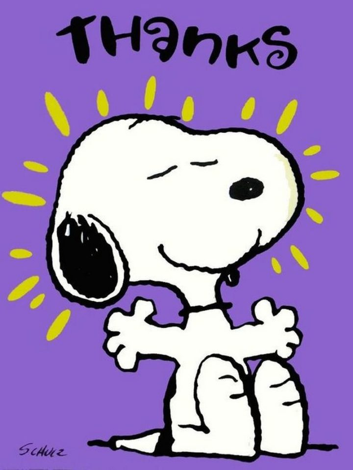 """101 Thank You Memes - """"Snoopy: Thanks."""""""