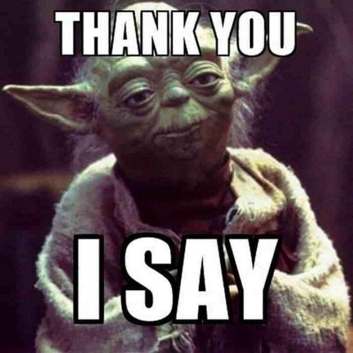 "101 Thank You Memes - ""Yoda: Thank you, I say."""