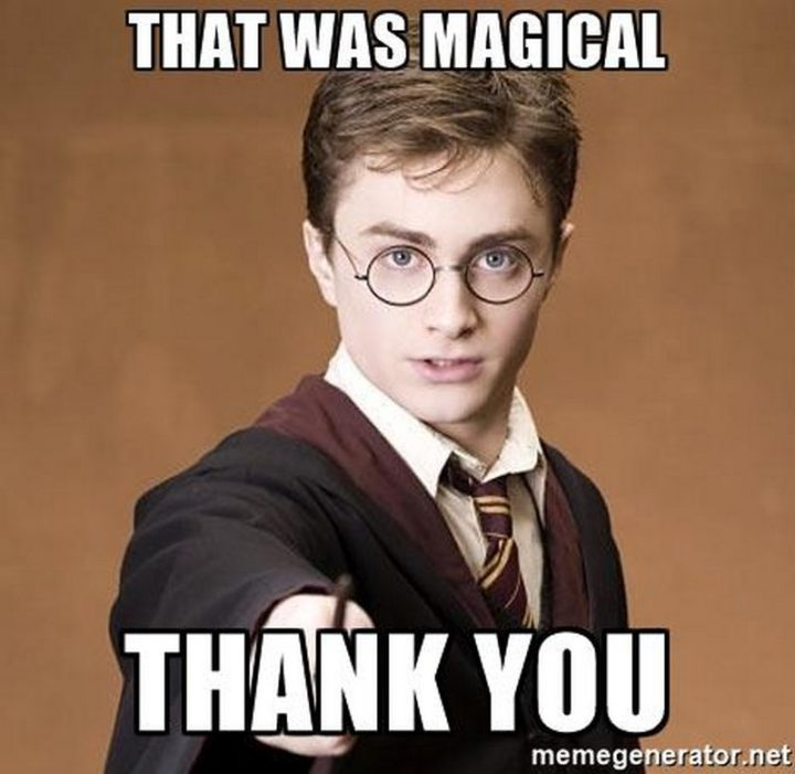 """101 Thank You Memes - """"Harry Potter: That was magical, thank you."""""""