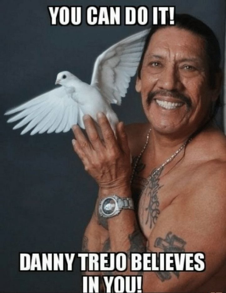 "101 You Can Do It Memes - ""You can do it! Danny Trejo believes in you!"""