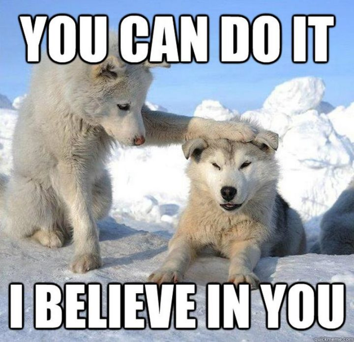 "101 You Can Do It Memes - ""You can do it. I believe in you."""