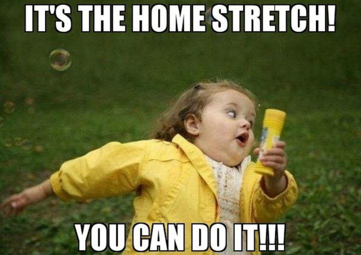 "101 You Can Do It Memes - ""It's the home stretch! You can do it!!!"""