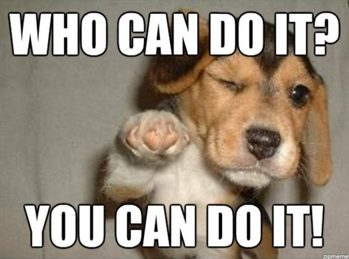 "101 You Can Do It Memes - ""Who can do it? You can do it!"""