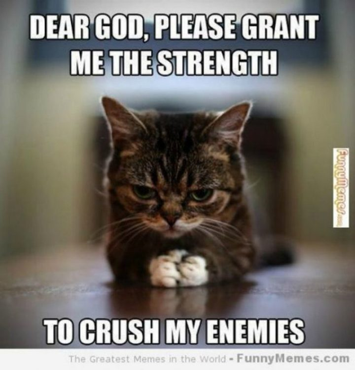 "101 You Can Do It Memes - ""Dear God, please grant me the strength to crush my enemies."""