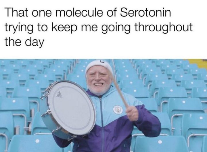"101 You Can Do It Memes - ""That one molecule of serotonin trying to keep me going throughout the day."""