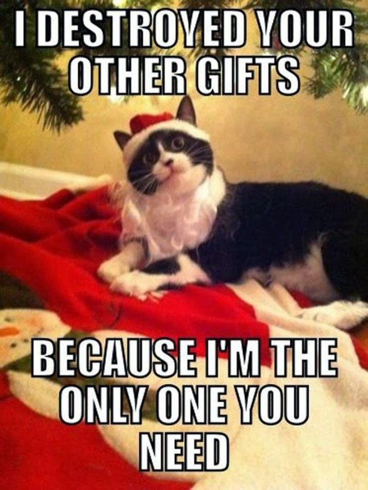 """87 Christmas Memes - """"I destroyed your other gifts because I'm the only one you need."""""""