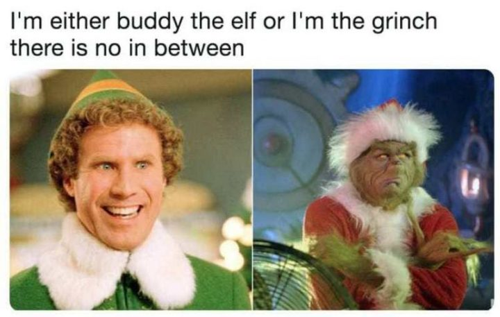 """87 Christmas Memes - """"I'm either buddy the elf or I'm the grinch. There is no in-between."""""""