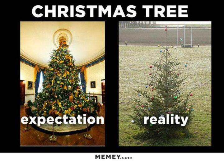 "87 Christmas Memes - ""Christmas Tree: Expectation vs reality."""