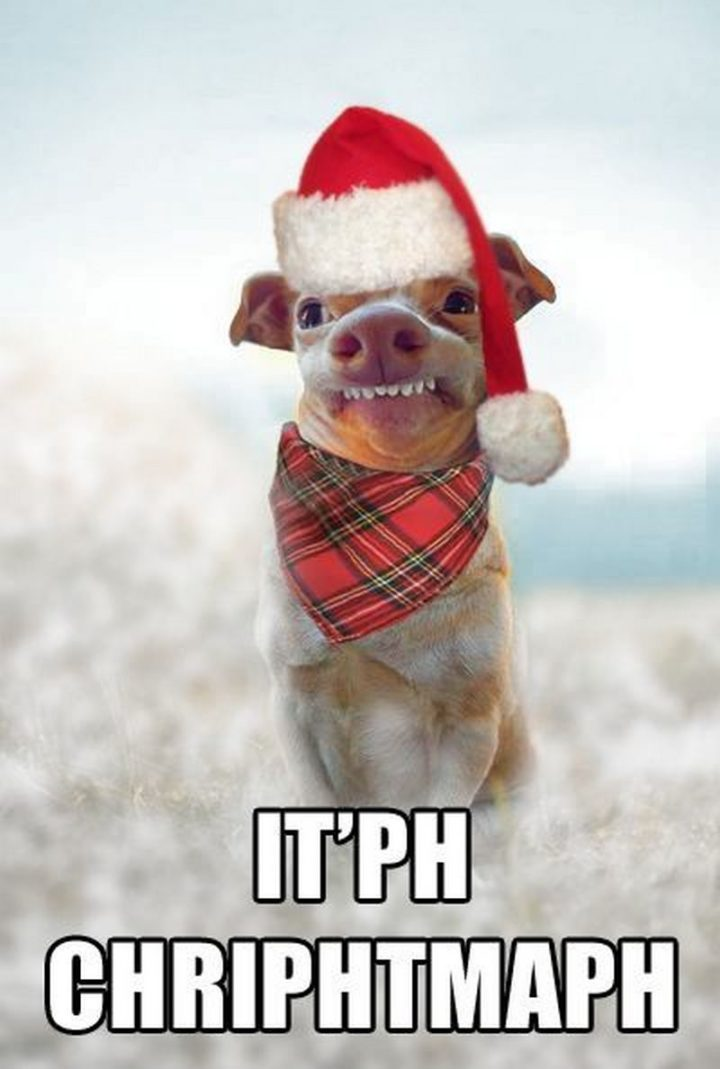 "87 Christmas Memes - ""It'ph Chriphtmaph."""