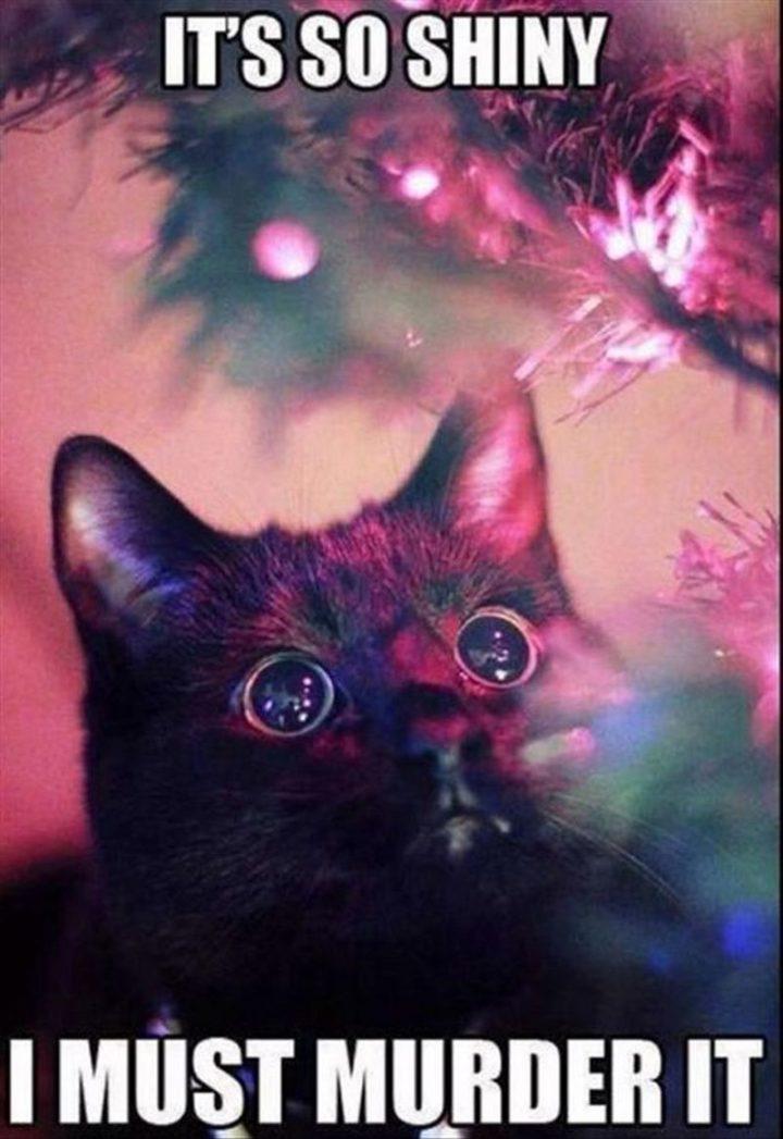 "87 Christmas Memes - ""It's so shiny. I must murder it."""