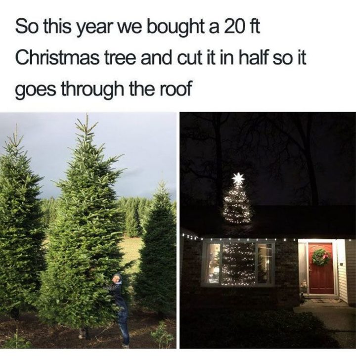 """87 Christmas Memes - """"So this year we bought a 20 ft Christmas tree and cut it in half so it goes through the roof."""""""