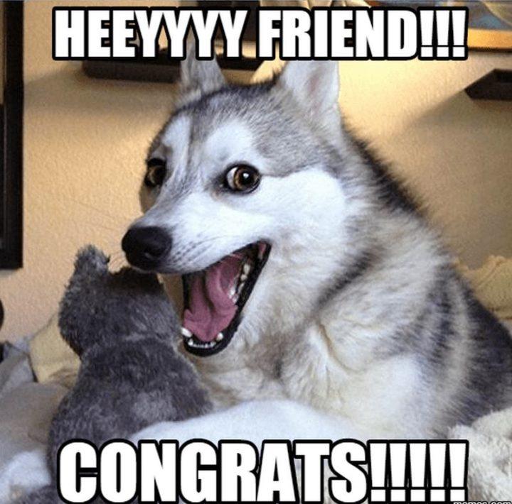 "71 Congratulations Memes - ""Heeyyyy friend!!! Congrats!!!!!"""