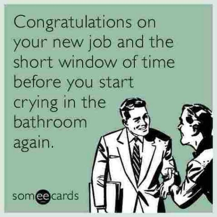 "71 Congratulations Memes - ""Congratulations on your new job and the short window of time before you start crying in the bathroom again."""