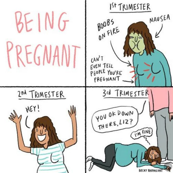 "71 Pregnancy Memes - ""Being pregnant. 1st trimester: Boobs on fire, nausea, can't even tell people you're pregnant. 2nd trimester: Hey! 3rd trimester: You OK down there, Liz? I'm fine."""