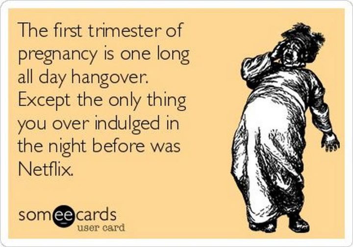 "71 Pregnancy Memes - ""The first trimester of pregnancy is one long all-day hangover. Except, the only thing you overindulged in the night before was Netflix."""