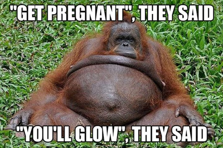 "71 Pregnancy Memes - ""'Get pregnant', they said. 'You'll glow', they said."""