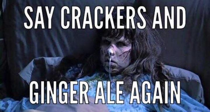 "71 Pregnancy Memes - ""Say crackers and ginger ale again."""