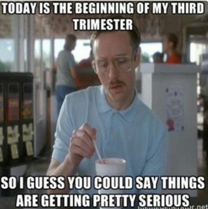 "71 Pregnancy Memes - ""Today is the beginning of my third trimester. So I guess you could say things are getting pretty serious."""