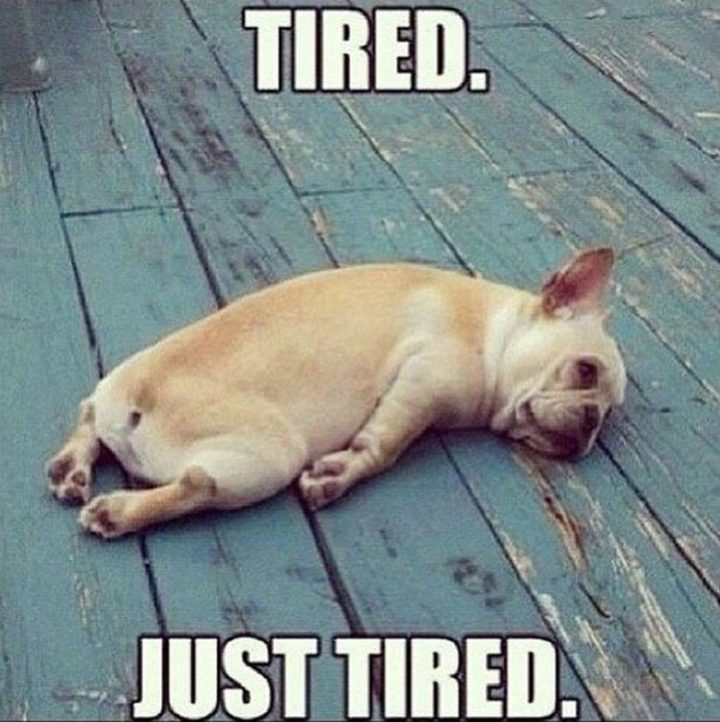 "71 Pregnancy Memes - ""Tired. Just tired."""