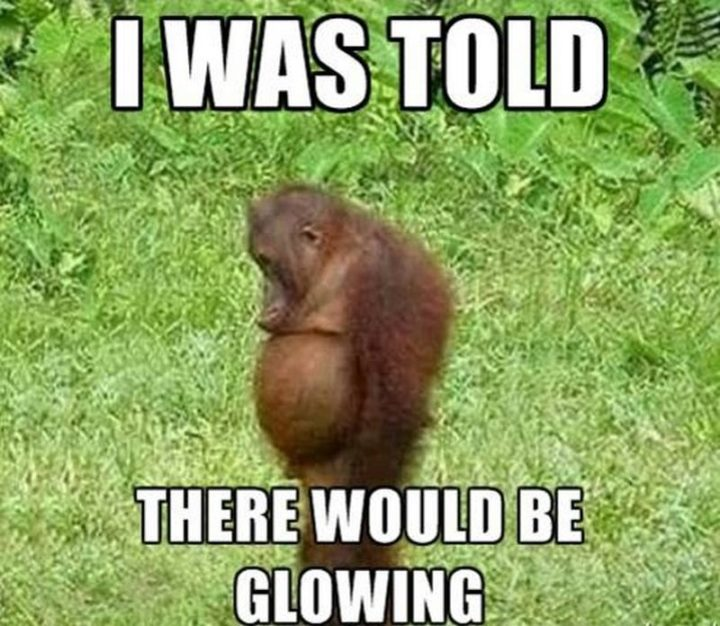 "71 Pregnancy Memes - ""I was told there would be glowing."""