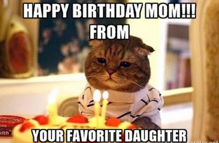 "101 Happy Birthday Mom Memes - ""Happy birthday mom!!! From your favorite daughter."""