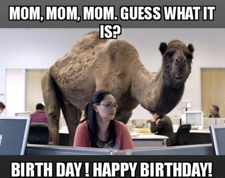 "101 Happy Birthday Mom Memes - ""Mom, mom, mom. Guess what it is? Birthday day! Happy birthday!"""