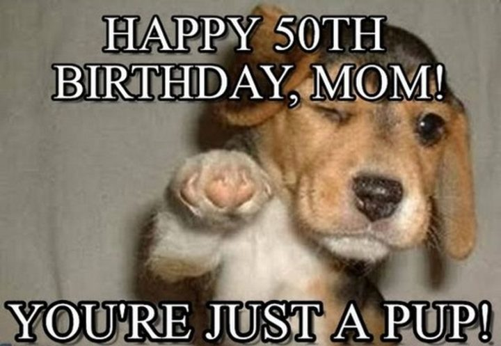 "101 Happy Birthday Mom Memes - ""Happy 50th birthday, mom! You're just a pup!"""