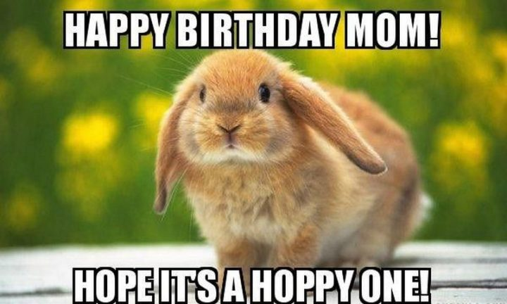 "101 Happy Birthday Mom Memes - ""Happy birthday mom! I hope it's a hoppy one!"""