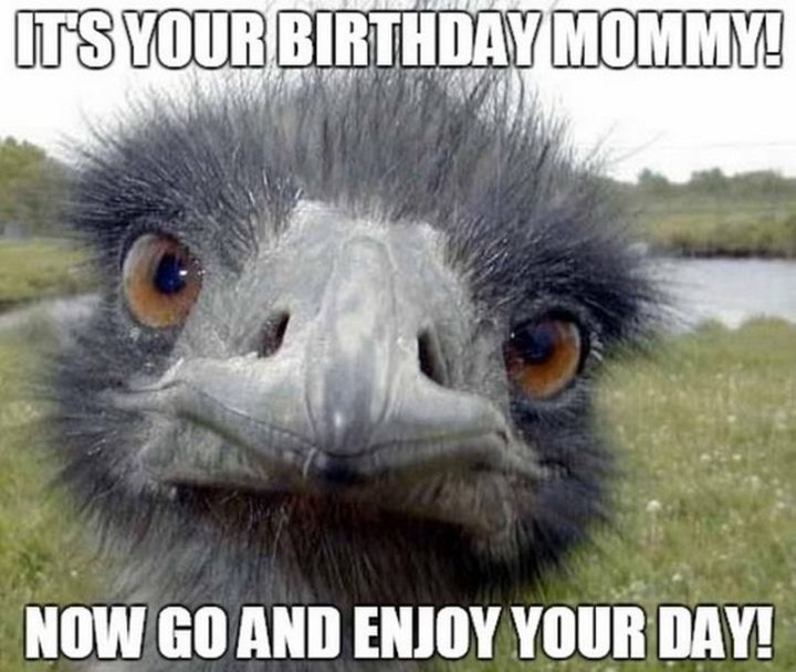 """""""It's your birthday mommy! Now go and enjoy your day!"""""""