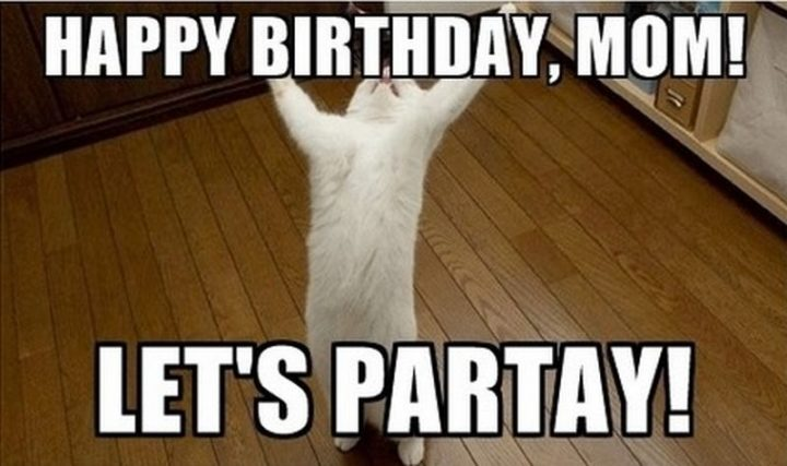 "101 Happy Birthday Mom Memes - ""Happy birthday, mom! Let's partay!"""