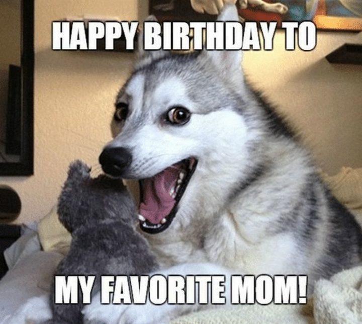 """Happy birthday to my favorite mom!"""