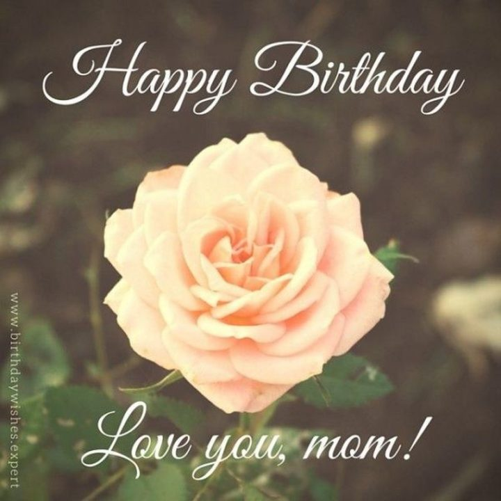 "101 Happy Birthday Mom Memes - ""Happy birthday. Love you, mom!"""