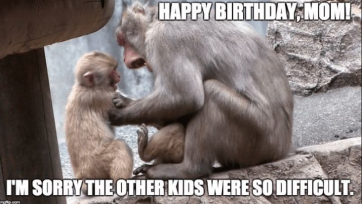 "101 Happy Birthday Mom Memes - ""Happy birthday mom! I""m sorry the other kids were so difficult."""