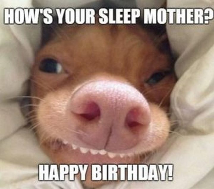 """""""How's your sleep mother? Happy birthday!"""""""