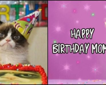 """101 """"Happy Birthday Mom"""" Memes for the Best Mom in the World"""