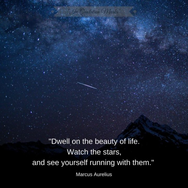 """47 """"Life is Beautiful"""" Quotes - """"Dwell on the beauty of life. Watch the stars, and see yourself running with them."""" - Marcus Aurelius"""