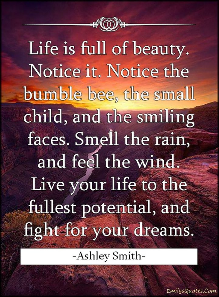 """47 """"Life is Beautiful"""" Quotes - """"Life is full of beauty. Notice it. Notice the bumble bee, the small child, and the smiling faces. Smell the rain, and feel the wind. Live your life to the fullest potential, and fight for your dreams."""" - Ashley Smith"""