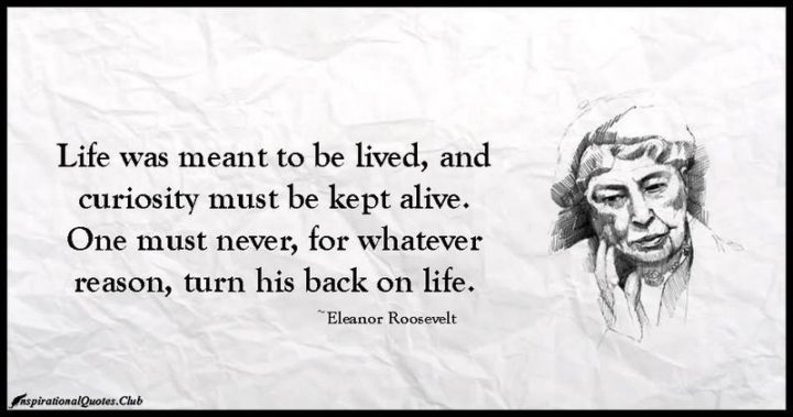 """47 """"Life is Beautiful"""" Quotes - """"Life was meant to be lived, and curiosity must be kept alive. One must never, for whatever reason, turn his back on life."""" - Eleanor Roosevelt"""