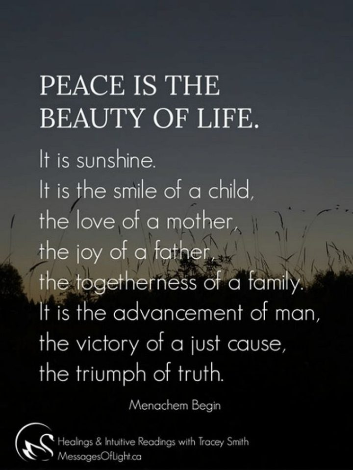 """47 """"Life is Beautiful"""" Quotes - """"Peace is the beauty of life. It is sunshine. It is the smile of a child, the love of a mother, the joy of a father, the togetherness of a family. It is the advancement of man, the victory of a just cause, the triumph of truth."""" - Menachem Begin"""