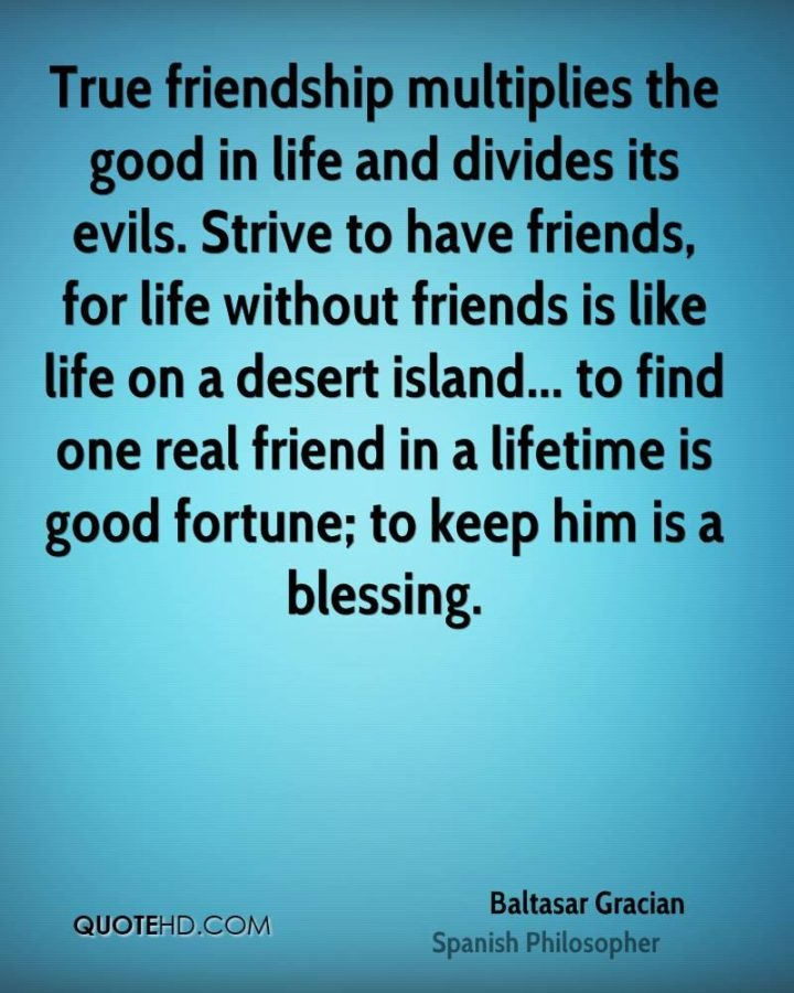 """47 """"Life is Beautiful"""" Quotes - """"True friendship multiplies the good in life and divides its evils."""" - Baltasar Gracian"""