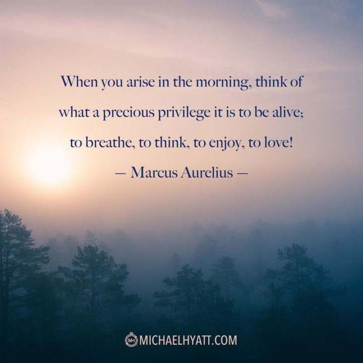 """47 """"Life is Beautiful"""" Quotes - """"When you arise in the morning think of what a precious privilege it is to be alive, to breathe, to think, to enjoy, to love."""" - Marcus Aurelius"""