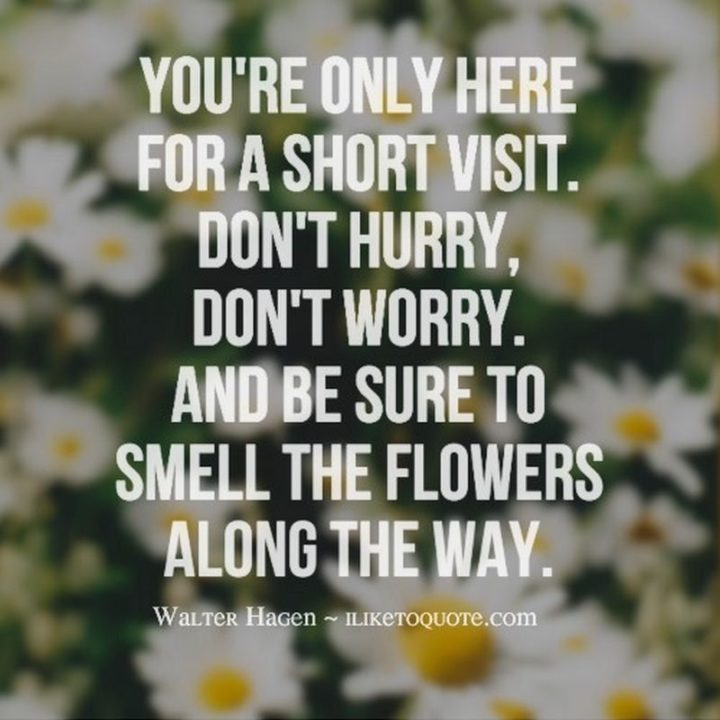 """47 """"Life is Beautiful"""" Quotes - """"You're only here for a short visit. Don't hurry, don't worry. And be sure to smell the flowers along the way."""" - Walter Hagen"""